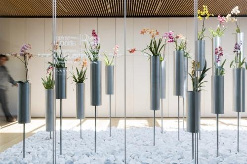 Photographie de décoration d'un patio paysagé à l'Office Notarial Ast & Carcelle réalisé par l'architecte Thierry Bonne. Paysagiste Ursula Kurz, agence Pasodoble. | Philippe DUREUIL Photographie