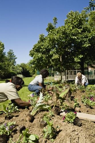 Photographie développement durable réalisée pour le Conseil Général des Hauts-de-Seine | Philippe DUREUIL Photographie