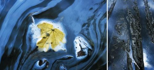 Exposition photographique Extrait de Vrai - Polyptyques imprimés sur bâches par Multiplast, imprimeur numérique | Philippe DUREUIL Photographie