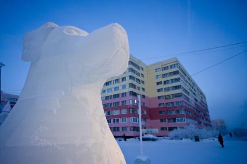 Sculpture en glace d'un chien | Philippe DUREUIL Photographie