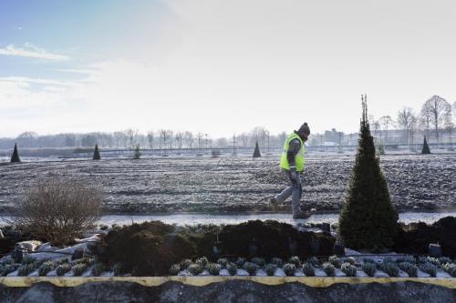 Photo de suivi de chantier. Reportage sur les travaux de plantation dans les jardins à la française du château de Chambord. | Philippe DUREUIL Photographie