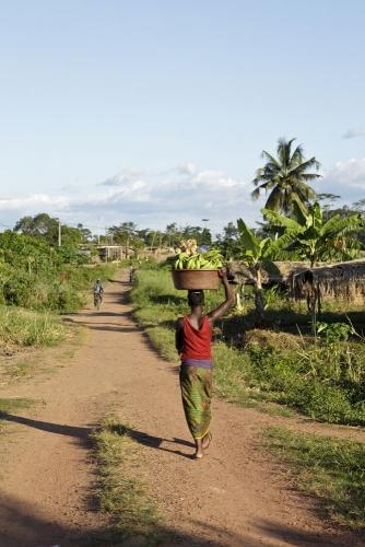 Photographie d'un village de brousse. Reportage photographique réalisé pour Nescafé® en Côte d'Ivoire. | Philippe DUREUIL Photographie