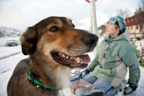 Enfant avec son chien dans la neige | Philippe DUREUIL Photographie