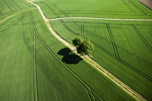 photographe-drone-agriculture