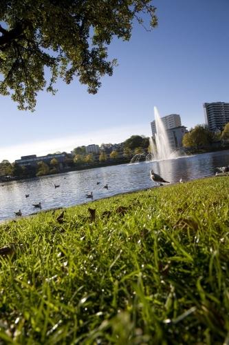 Espace vert avec un lac