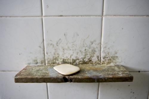 Savon sur un porte savon minimaliste en bois | Philippe DUREUIL Photographie