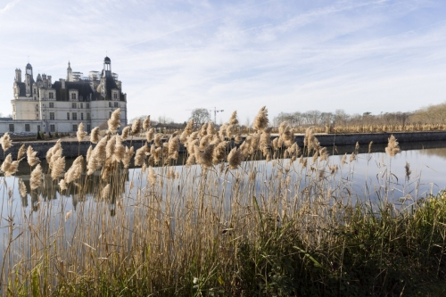 Photo-paysage-jardins-chateau_Chambord_douves_Cosson