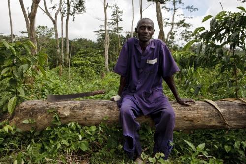 Planteur de café assis dans sa plantation avec sa machette