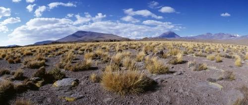 Panorama 180°du désert d'Atacama au Chili. | Philippe DUREUIL Photographie