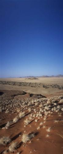 Photographie panoramique de paysage - Namibie | Philippe DUREUIL Photographie