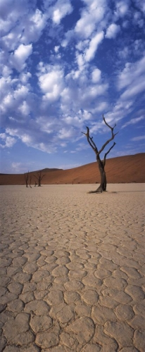 Paysage panoramique - Namibie | Philippe DUREUIL Photographie