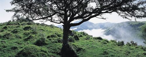 Photographie panoramique de paysage du Pays Basque réalisée dans les Pyrénées-Atlantiques