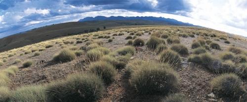 Australie - Flinders Ranges - paysage panoramique | Philippe DUREUIL Photographie