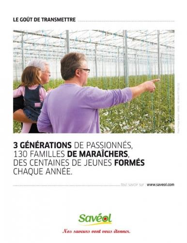 campagne_saveol_tomates