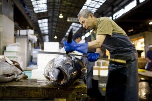 Découpe d'un thon au sabre | Philippe DUREUIL Photographie
