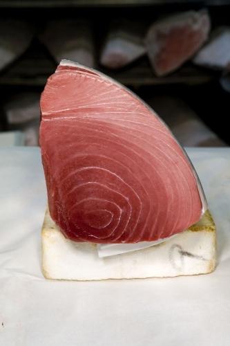 Pièce de thon rouge au marché aux poissons de Tsukiji à Tokyo Japon | Philippe DUREUIL Photographie