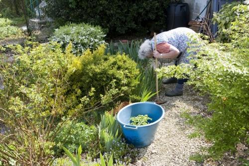 Femme âgée courbée dans son jardin potager. Photo d'illustration de la vie quotidienne au troisième âge. | Philippe DUREUIL Photographie